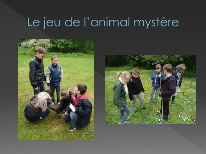 Le jeu de l'animal mystère