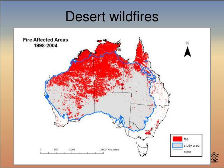Desert wildfires
