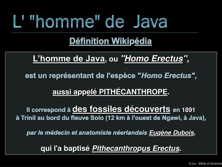 """L' """"homme"""" de  Java"""