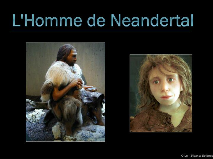 L'Homme de Neandertal