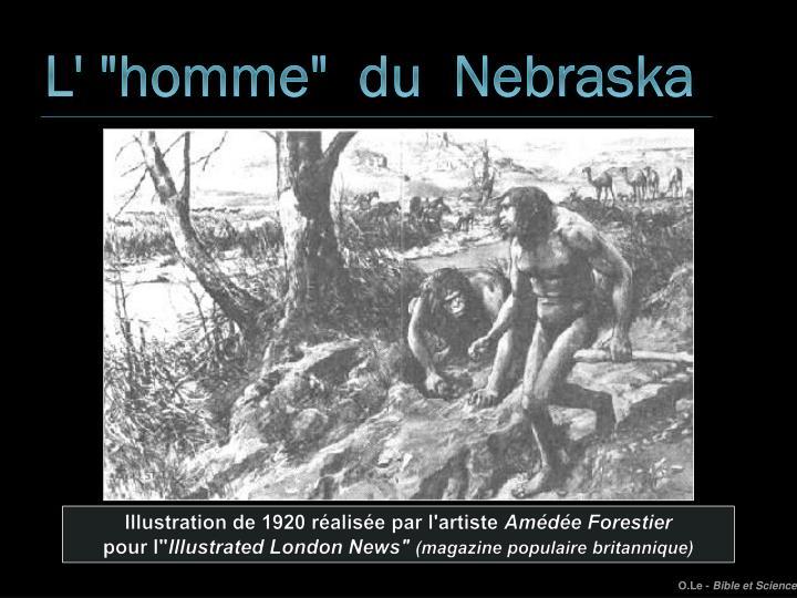 """L' """"homme""""  du  Nebraska"""