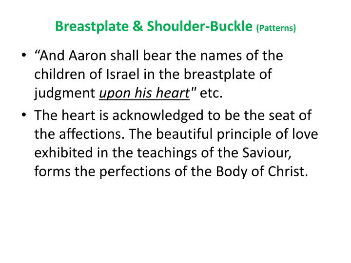 Breastplate & Shoulder-Buckle