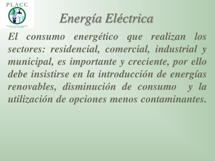 El consumo energético que realizan los sectores: residencial, comercial, industrial y municipal, es importante y creciente, por ello debe insistirse en la introducción de energías renovables, disminución de consumo  y la utilización de opciones menos contaminantes.