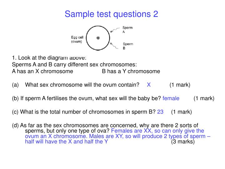 Sample test questions 2