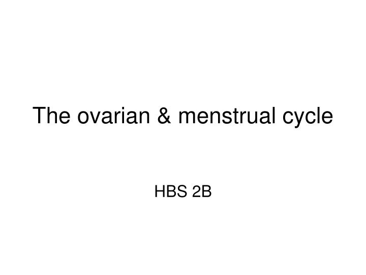 The ovarian menstrual cycle