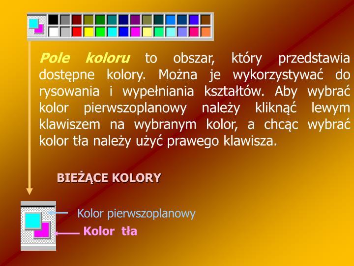 Pole koloru