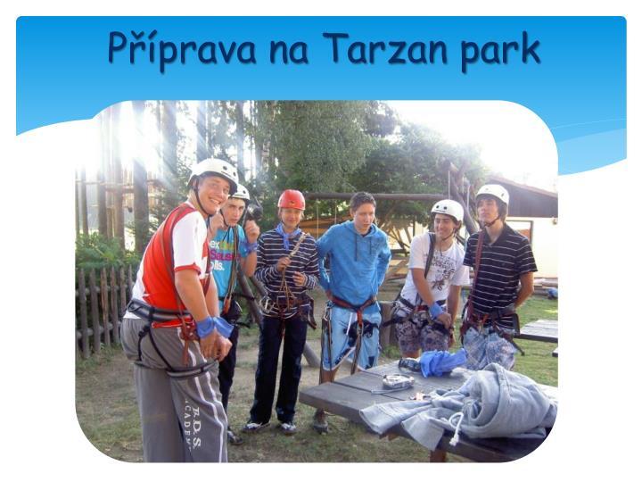 Příprava na Tarzan park