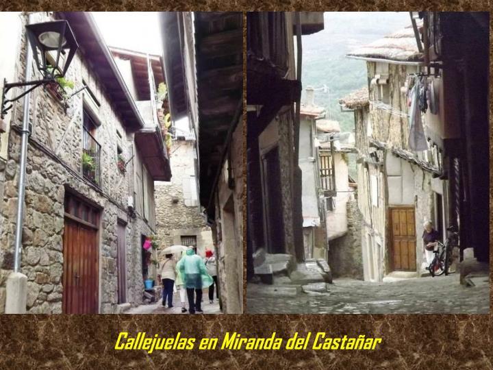 Callejuelas en Miranda del Castañar