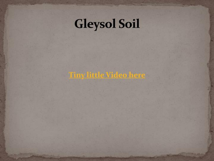 Gleysol Soil