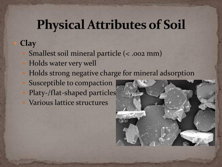 Physical Attributes of Soil