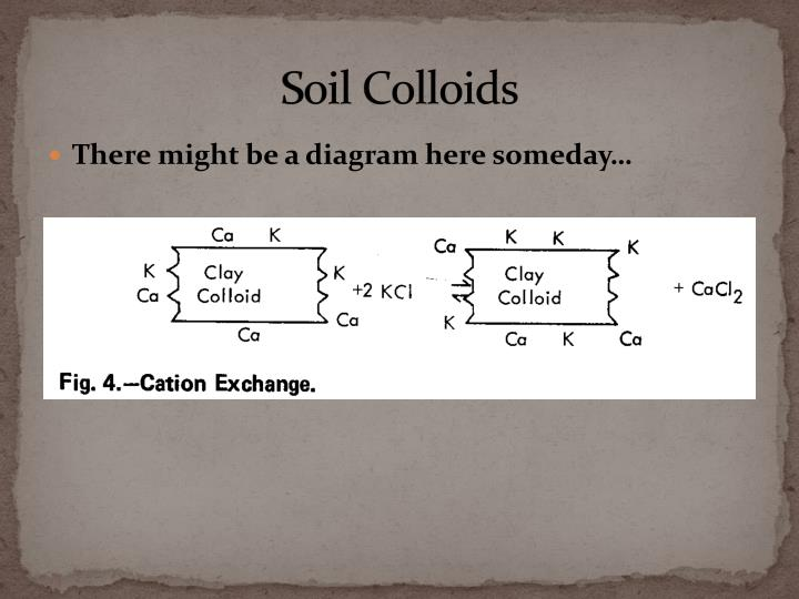 Soil Colloids