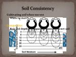 soil consistency3