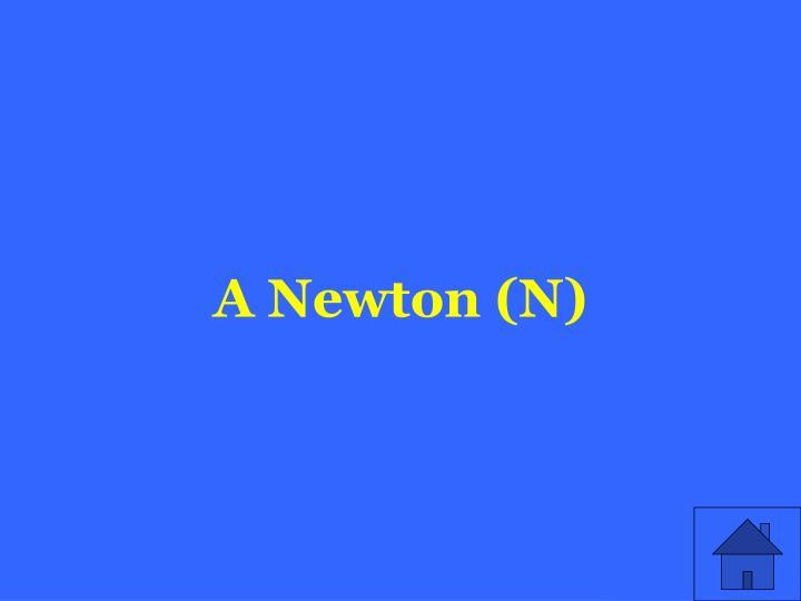 A Newton (N)
