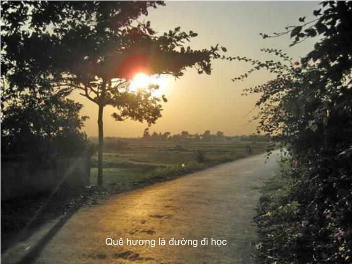 Quê hương là đường đi học