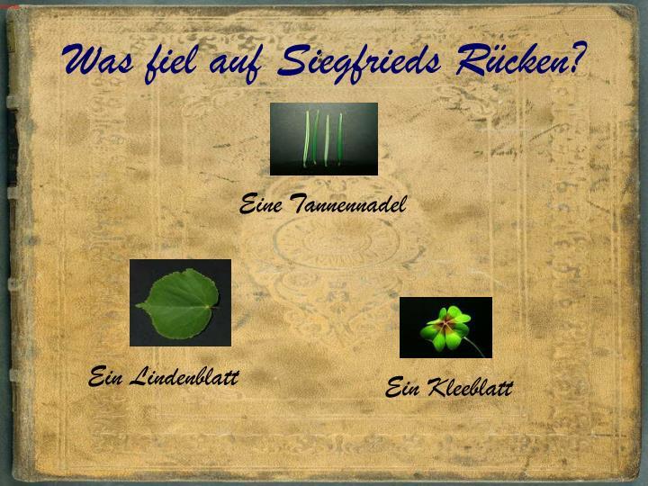 Was fiel auf Siegfrieds Rücken?