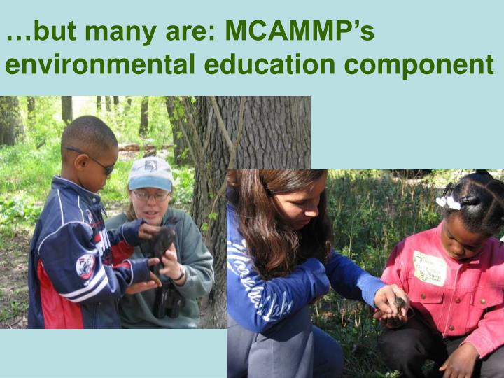 …but many are: MCAMMP's environmental education component