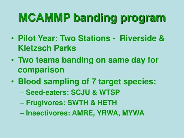 MCAMMP banding program