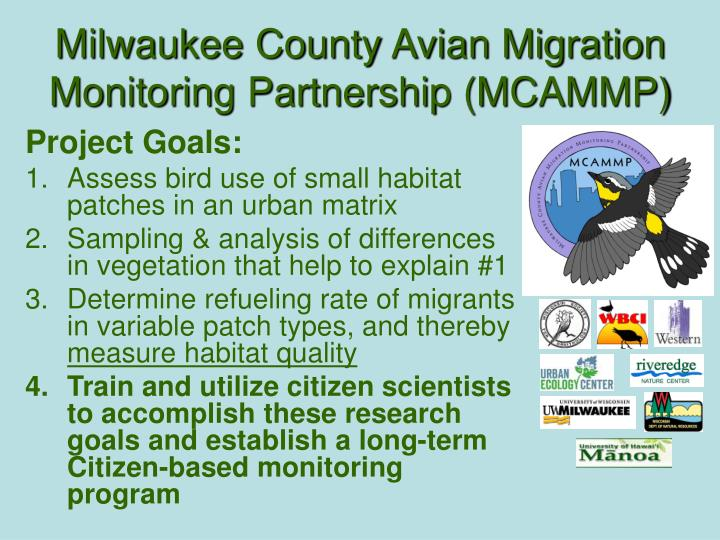 Milwaukee County Avian Migration Monitoring Partnership (MCAMMP)