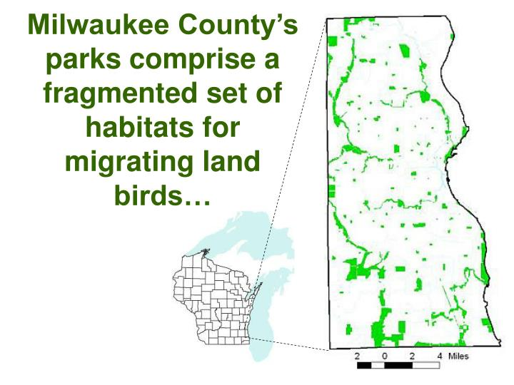 Milwaukee County's parks comprise a fragmented set of habitats for migrating land birds…