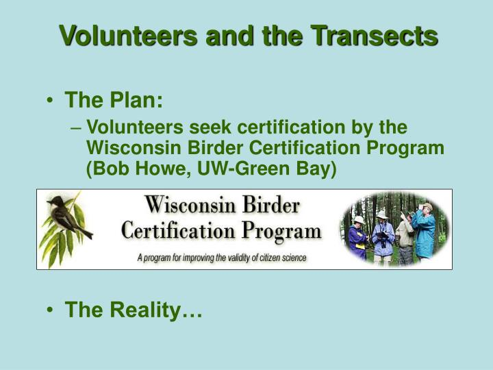 Volunteers and the Transects
