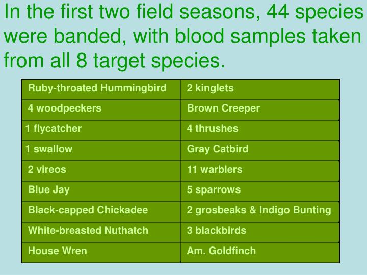 In the first two field seasons, 44 species were banded, with blood samples taken from all 8 target species.