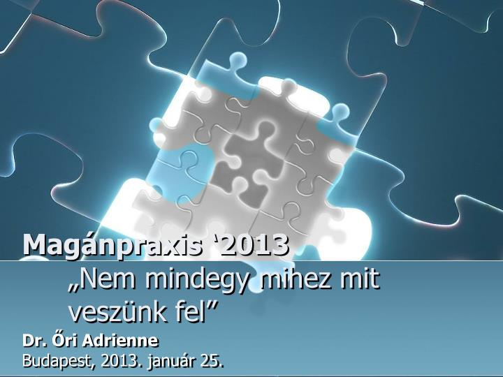 Magnpraxis 2013