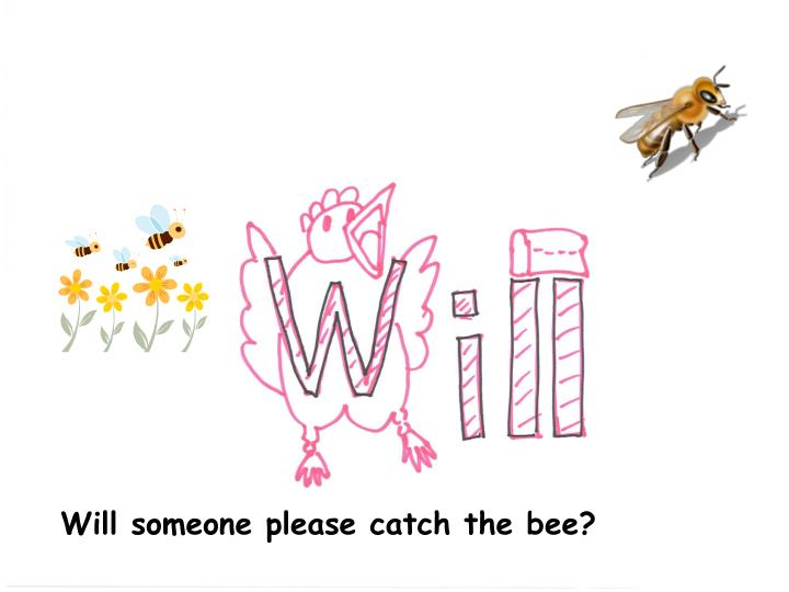 Will someone please catch the bee?