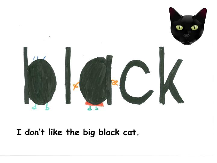 I don't like the big black cat.