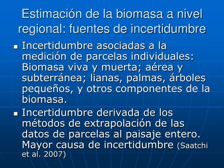Estimación de la biomasa a nivel regional: fuentes de incertidumbre