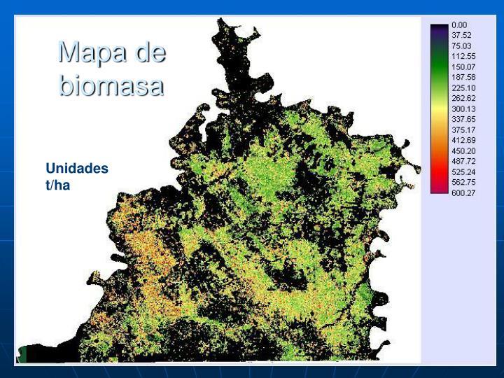 Mapa de biomasa