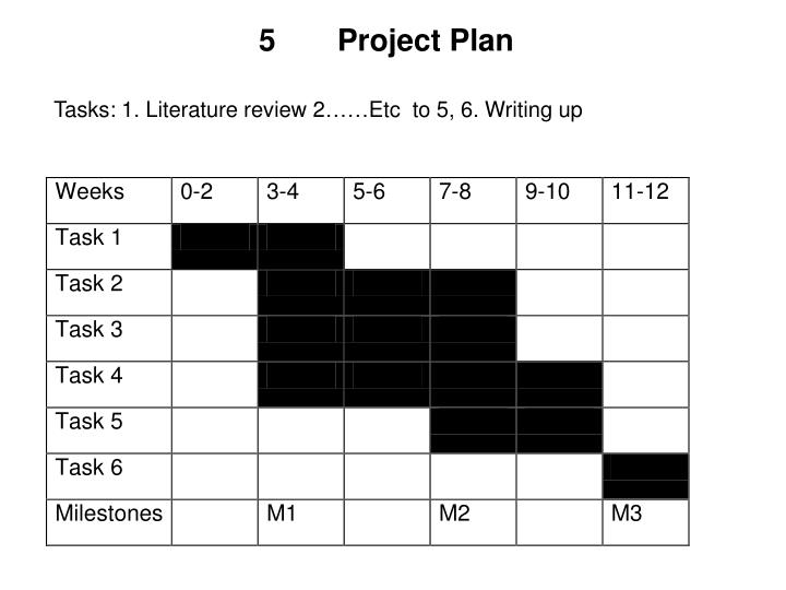 5Project Plan