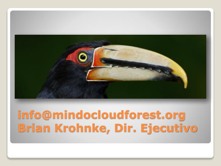 info@mindocloudforest.org