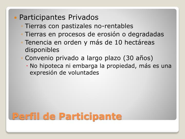 Participantes Privados