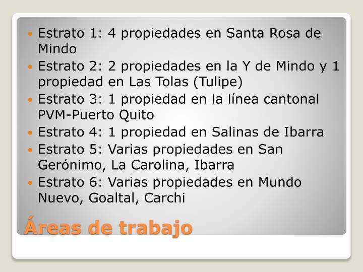 Estrato 1: 4 propiedades en Santa Rosa de Mindo