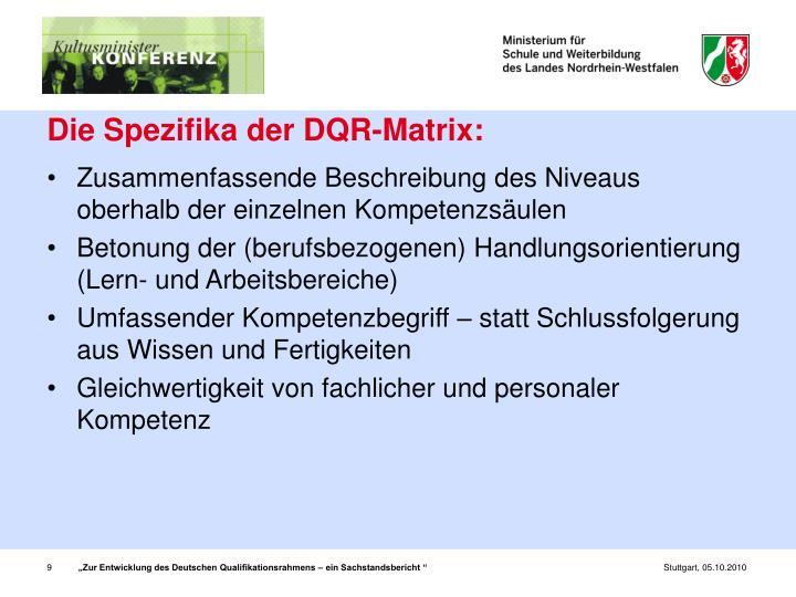 Die Spezifika der DQR-Matrix: