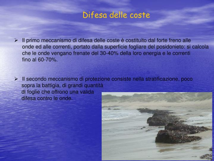 Difesa delle coste