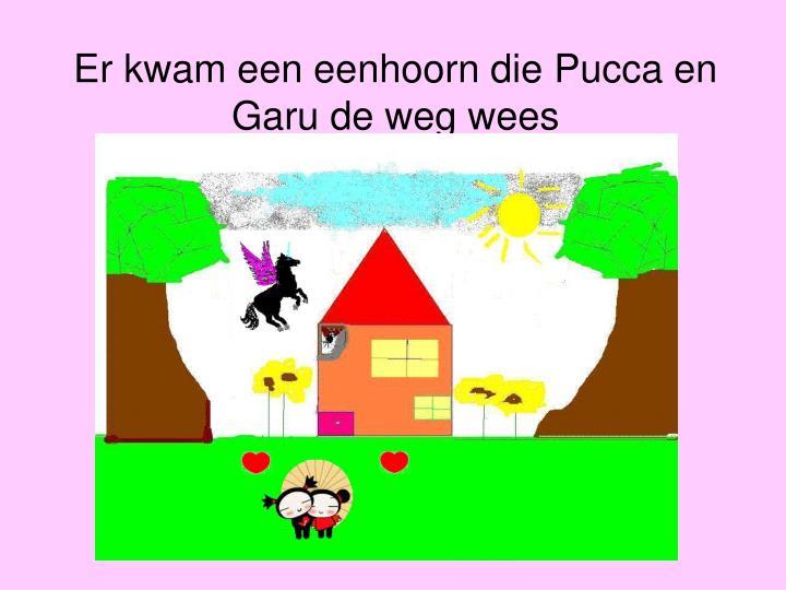 Er kwam een eenhoorn die Pucca en Garu de weg wees