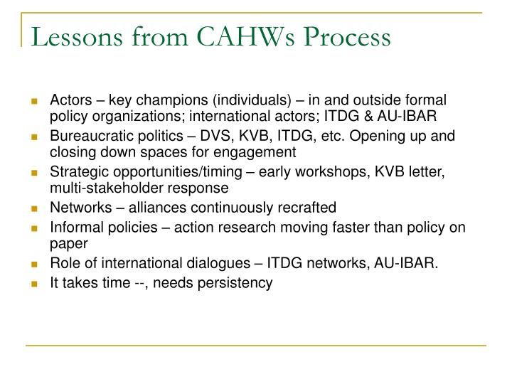 Lessons from CAHWs Process