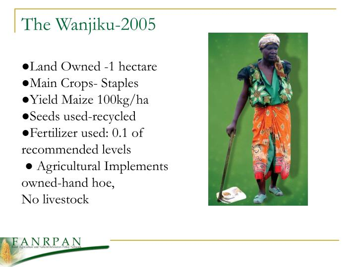 The Wanjiku-2005