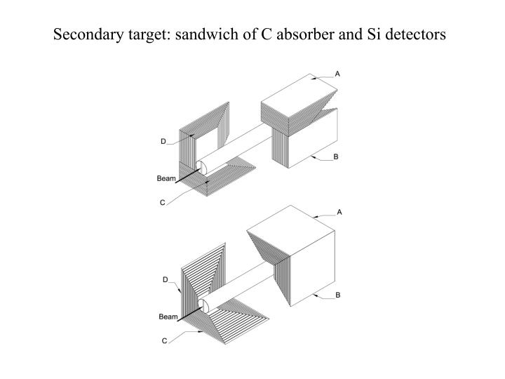 Secondary target: sandwich of C absorber and Si detectors