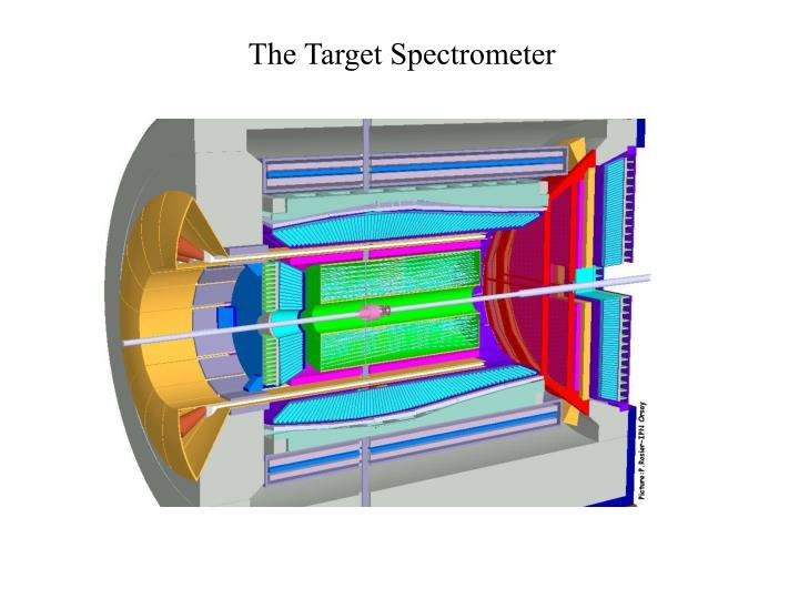 The Target Spectrometer