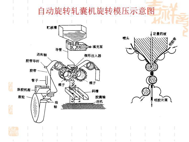 自动旋转轧囊机旋转模压示意图