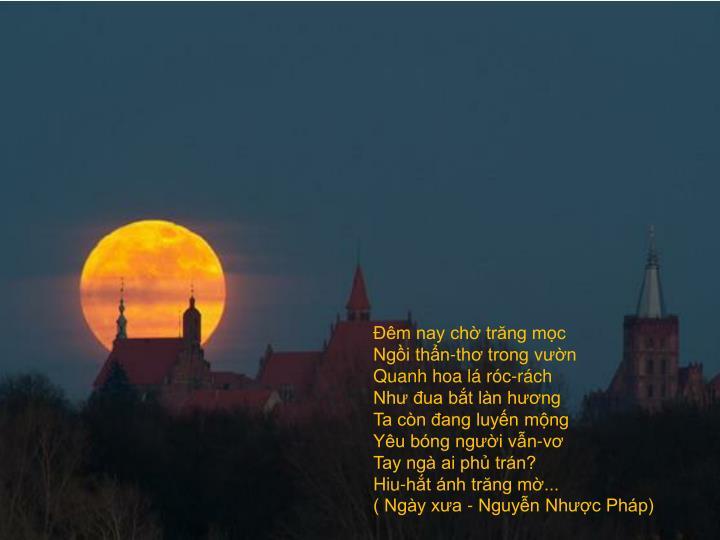 Đêm nay chờ trăng mọc