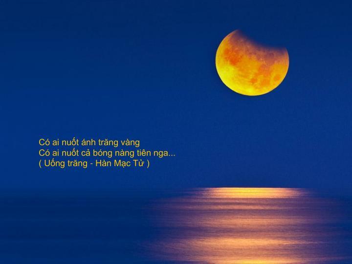 Có ai nuốt ánh trăng vàng