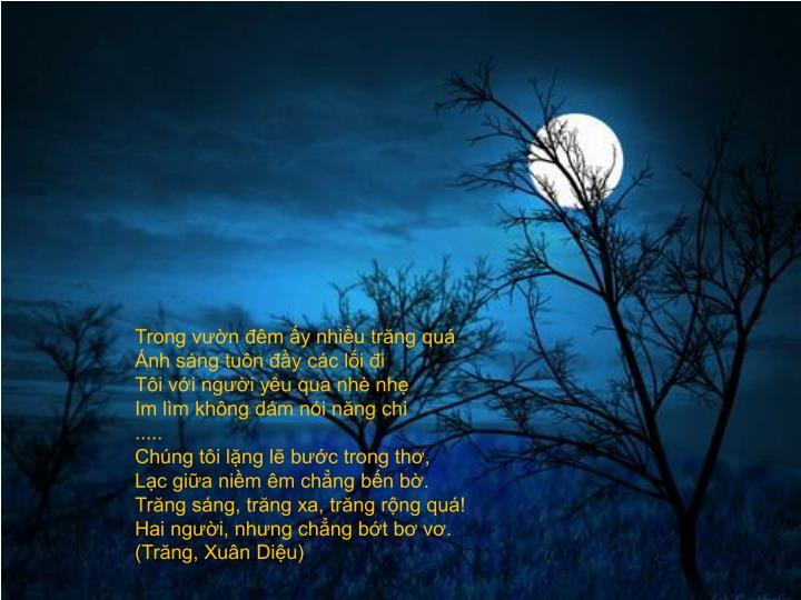 Trong vườn đêm ấy nhiều trăng quá