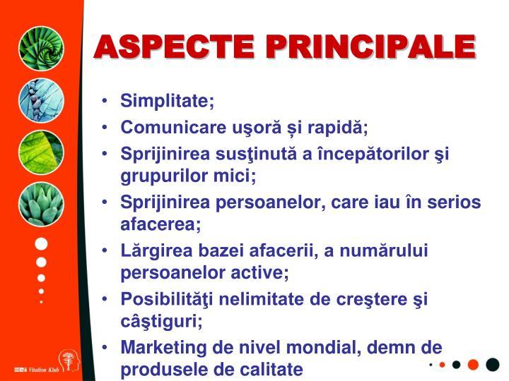 ASPECTE PRINCIPALE