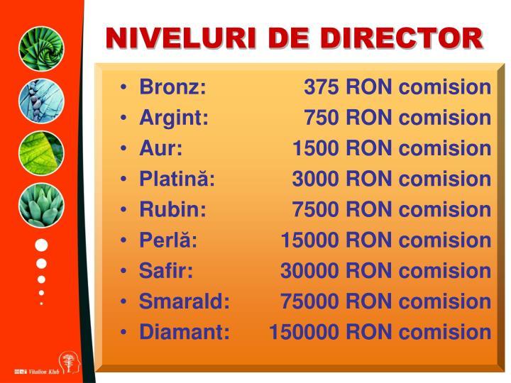 NIVELURI DE DIRECTOR