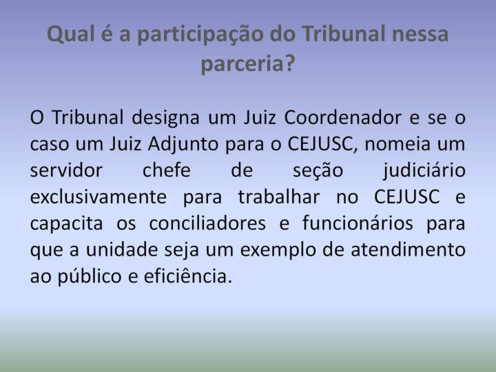 Qual é a participação do Tribunal nessa parceria?