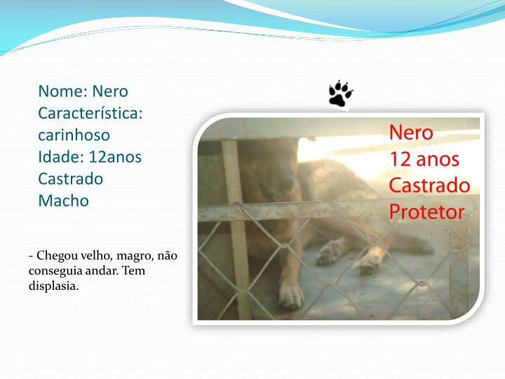Nome: Nero                              Característica: