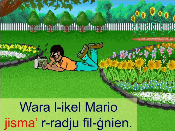 Wara l-ikel Mario